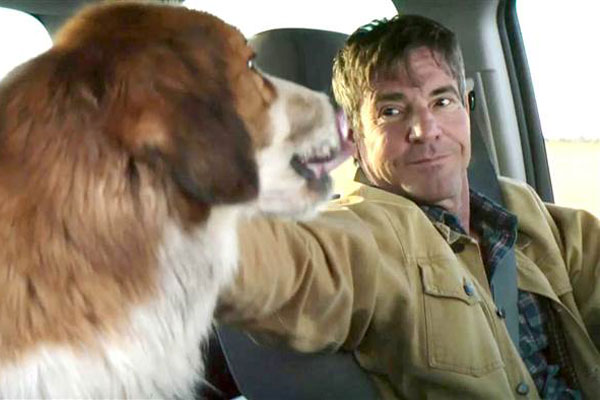 Actor Dennis Quaid